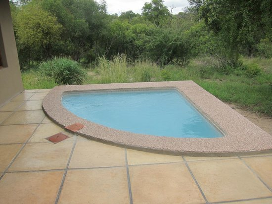 Arathusa Safari Lodge : plunge pool at room
