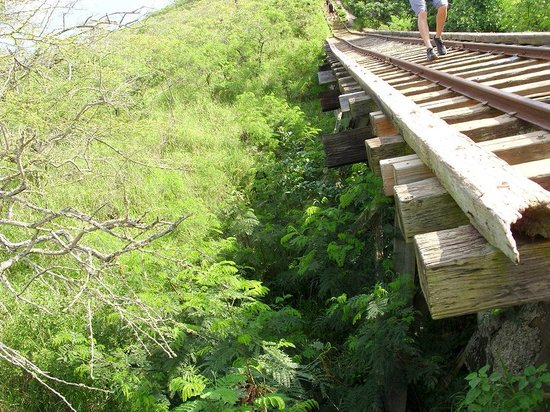 Koko Crater Trail: Another view of the bridge
