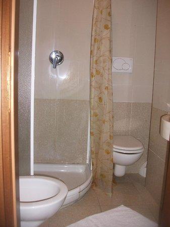 Hotel Nettuno : Baño