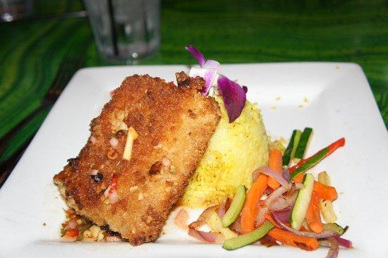 Kahunaville : Macadamia crusted Mahi Mahi