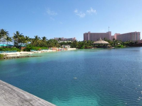 Atlantis, Royal Towers, Autograph Collection : Snorkeling area