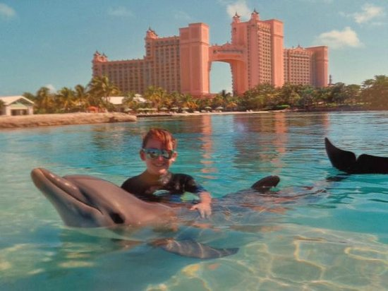 Atlantis, Royal Towers, Autograph Collection : Dolphin Cay, interaction with Missy the dolphin