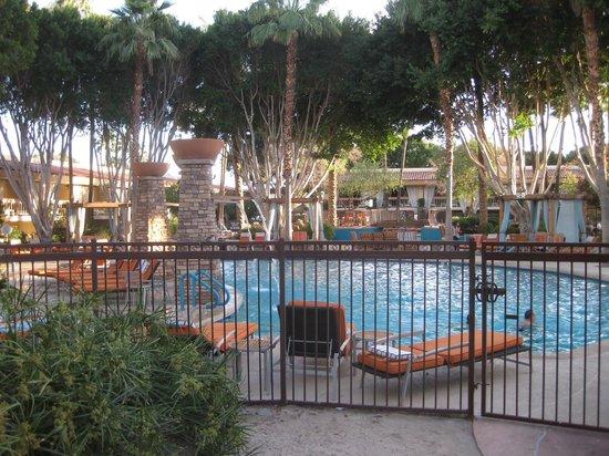 The Scott Resort & Spa: Poolside