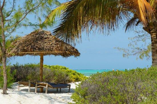 Hakuna Majiwe Beach Lodge: Spiaggia e mare favolosi