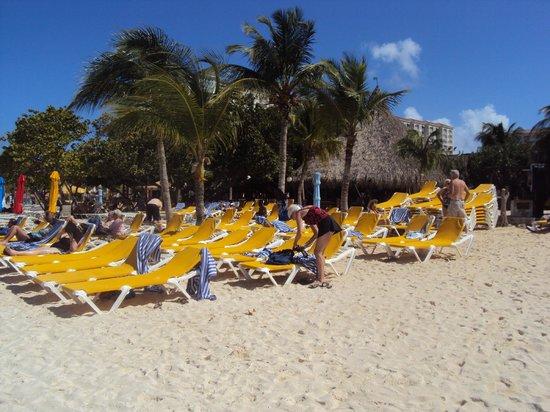 Pauline's Apartments Aruba: Apoio e facilidades de praia - Excelente!