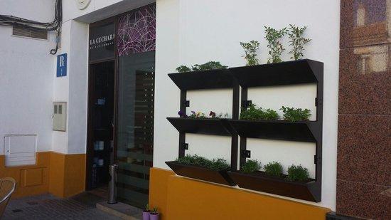 La Cuchara de San Lorenzo: Nuestro huerto vertical