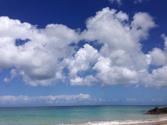 Conuco: Vieques Sky