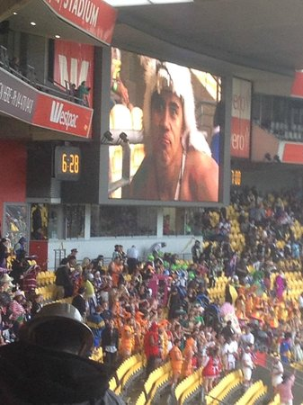Westpac Stadium: Convenient big screens help to see the action.