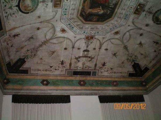 Palazzo Galletti Abbiosi: teto