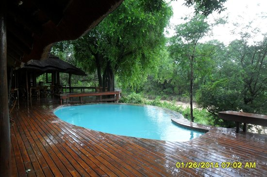 Imbali Safari Lodge: pool off dining area