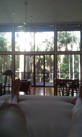 Pethers Rainforest Retreat: VIEW FROM OUR BED (SORRY ABOUT THE LEGS)