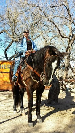 Houston's Horseback Riding: Kilo and Roz