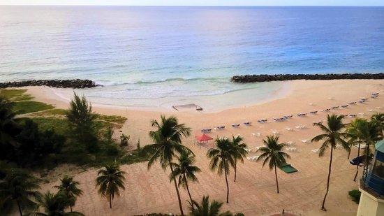 Hilton Barbados Resort: Superb View