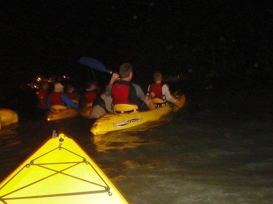 Bio Bay Kayaking: Heading out