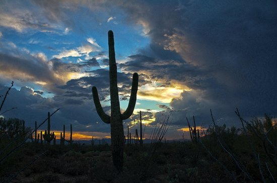 Gates Pass: West of Gate's Pass, down by Old Tucson