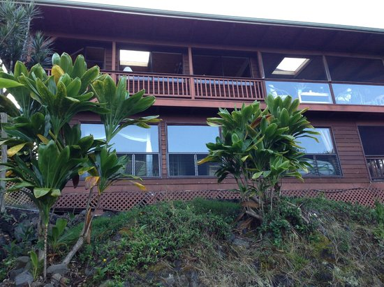 Aloha Guest House: View from Outside