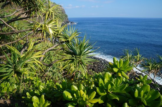 Maui Eco Retreat: Hike to the ocean