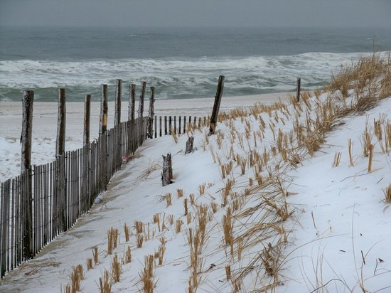 Chef Mike's ABG: Atlantic Ocean view, with (snow-covered) dunes, Seaside Park, NJ