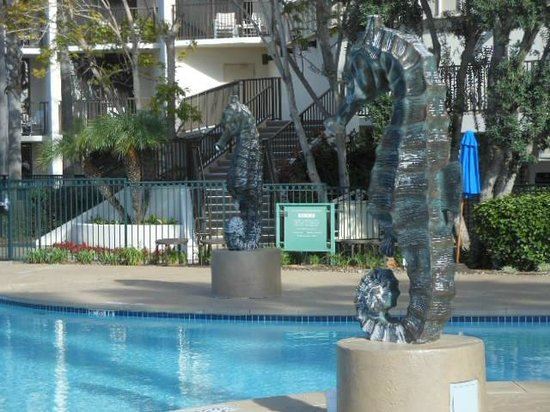 The Sheraton San Diego Hotel & Marina: Marina Tower pool