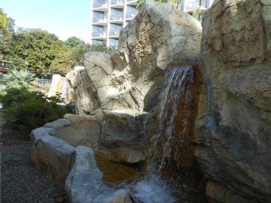 The Sheraton San Diego Hotel & Marina: Marina Tower pool area