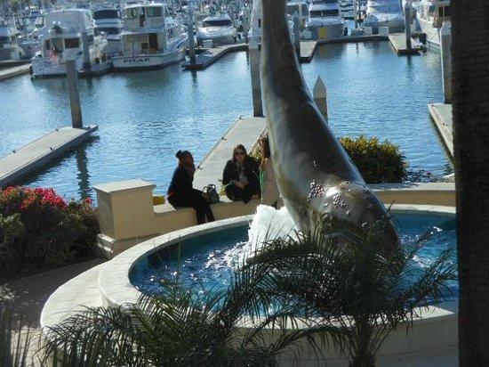 The Sheraton San Diego Hotel & Marina: Pool