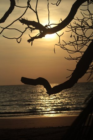 The Resort at Isla Palenque : Sunset from Dining and Beach Hut at Loc Rocas Restaurant