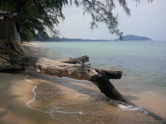 Lipa Bay Resort : Beach