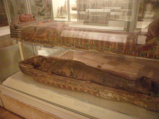 Real Museo de Ontario: Mummy