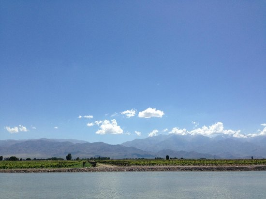 Ampora Wine Tours: view of the Andes