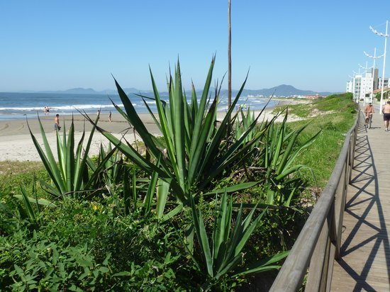 Gravata Beach