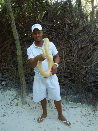 Melia Caribe Tropical : Dolphin excursion guy with a boa constrictor
