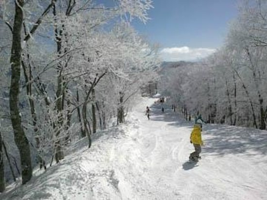 Pension Folk Tale: Skiing after fresh snow fall