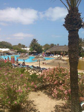 Club Marmara Zahra : Vu globale de la piscine