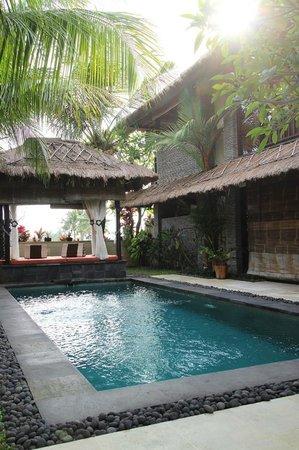 The Zala Villa Bali: pool