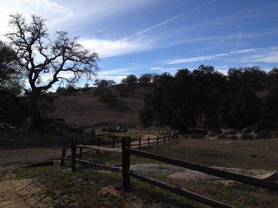 Santa Ysabel Open Space Preserve: Trail