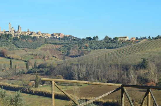 Agriturismo Poggiacolle: Wonderful view!