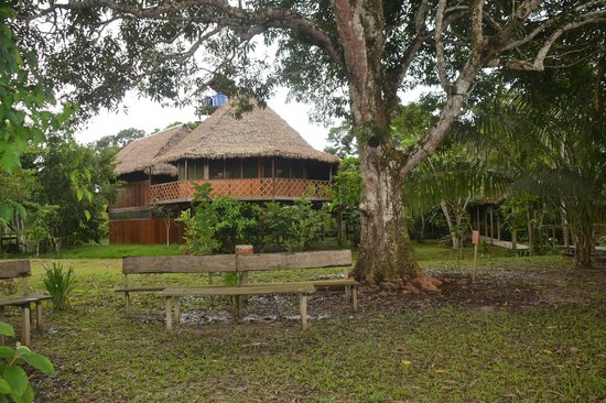 Sotupa Eco House : Vista del comedor