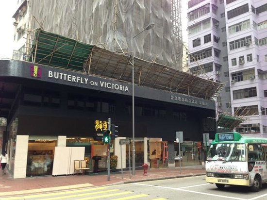 Butterfly on Victoria : Front entry