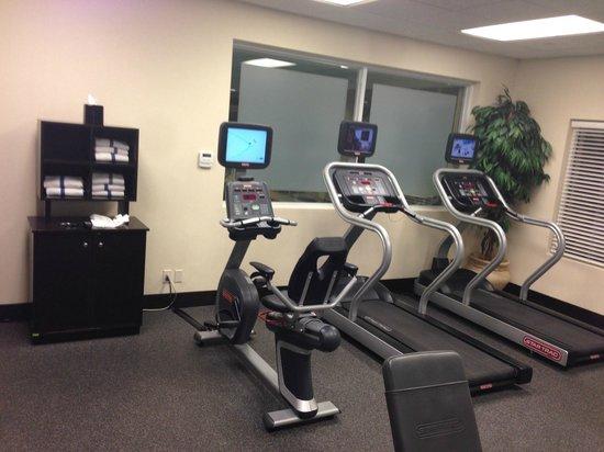 Hampton Inn & Suites  by Hilton Toronto Airport: gym