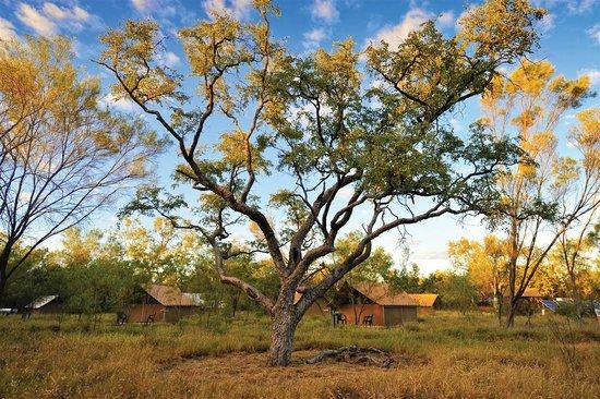 Bungle Bungle Wilderness Lodge: The incredible Australian Outback