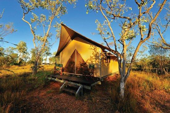 Bungle Bungle Wilderness Lodge: Private tented cabin