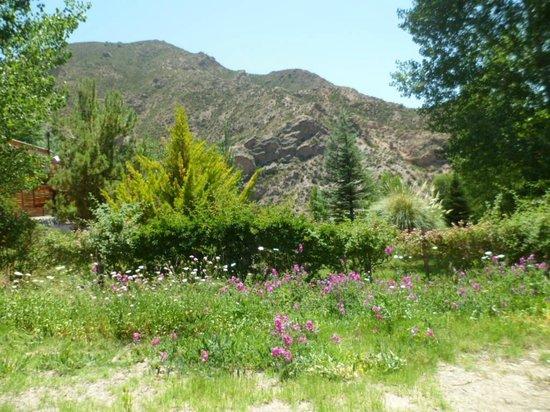Cabanas Andinas: Alrededores de Cabañas Andinas