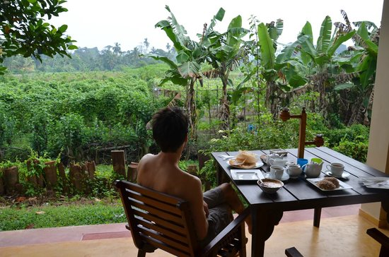 Peacock Villa: Breakfast with the garden view