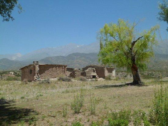 Cabanas Andinas: Alrededores cercanos de Cabañas Andinas