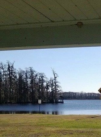 Vinton, LA: View from covered picnic table