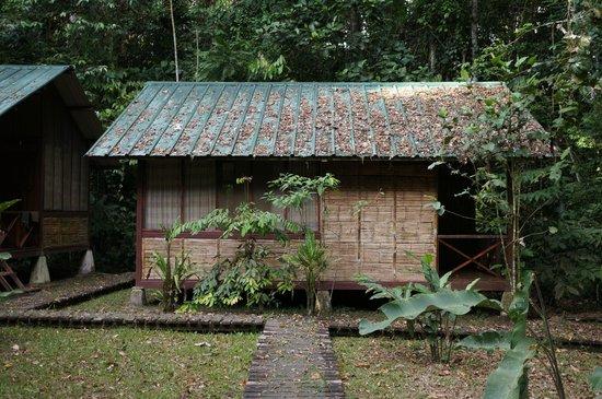 Tiputini Biodiversity Station: housing