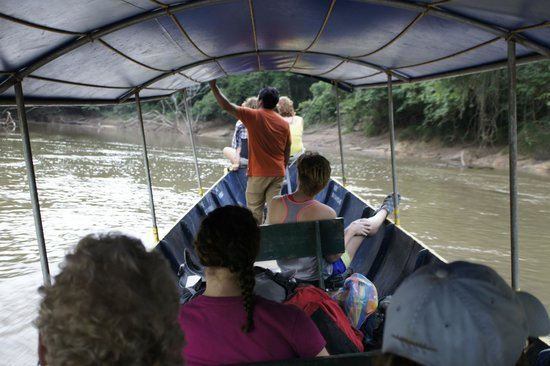 Tiputini Biodiversity Station: tiputini river