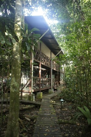 Tiputini Biodiversity Station: library, housing, classroom