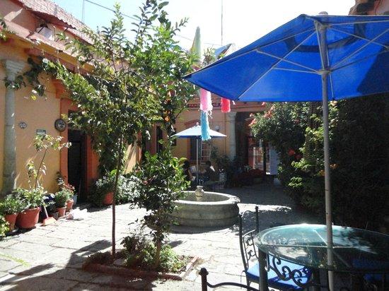 Hotel Posada del Centro : El bello patio oaxaqueño