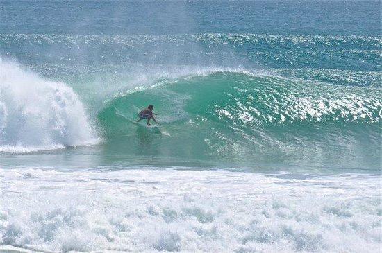 Spunkys Surf Shop - Home   Facebook